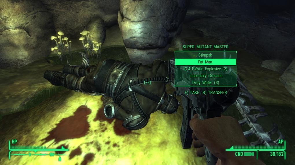Fallout: New Vegas oder: Wie ich lernte, die Mod zu lieben ...