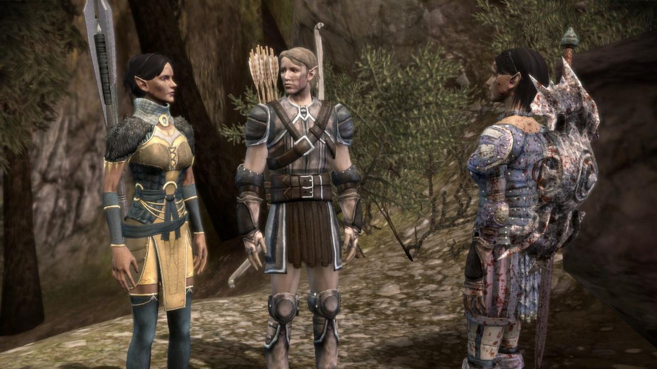 Dragon Age: Die Welt von Thedas #2 - Die Elfen