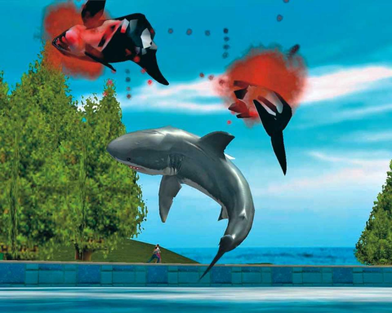 Der Weiße Hai Spiel