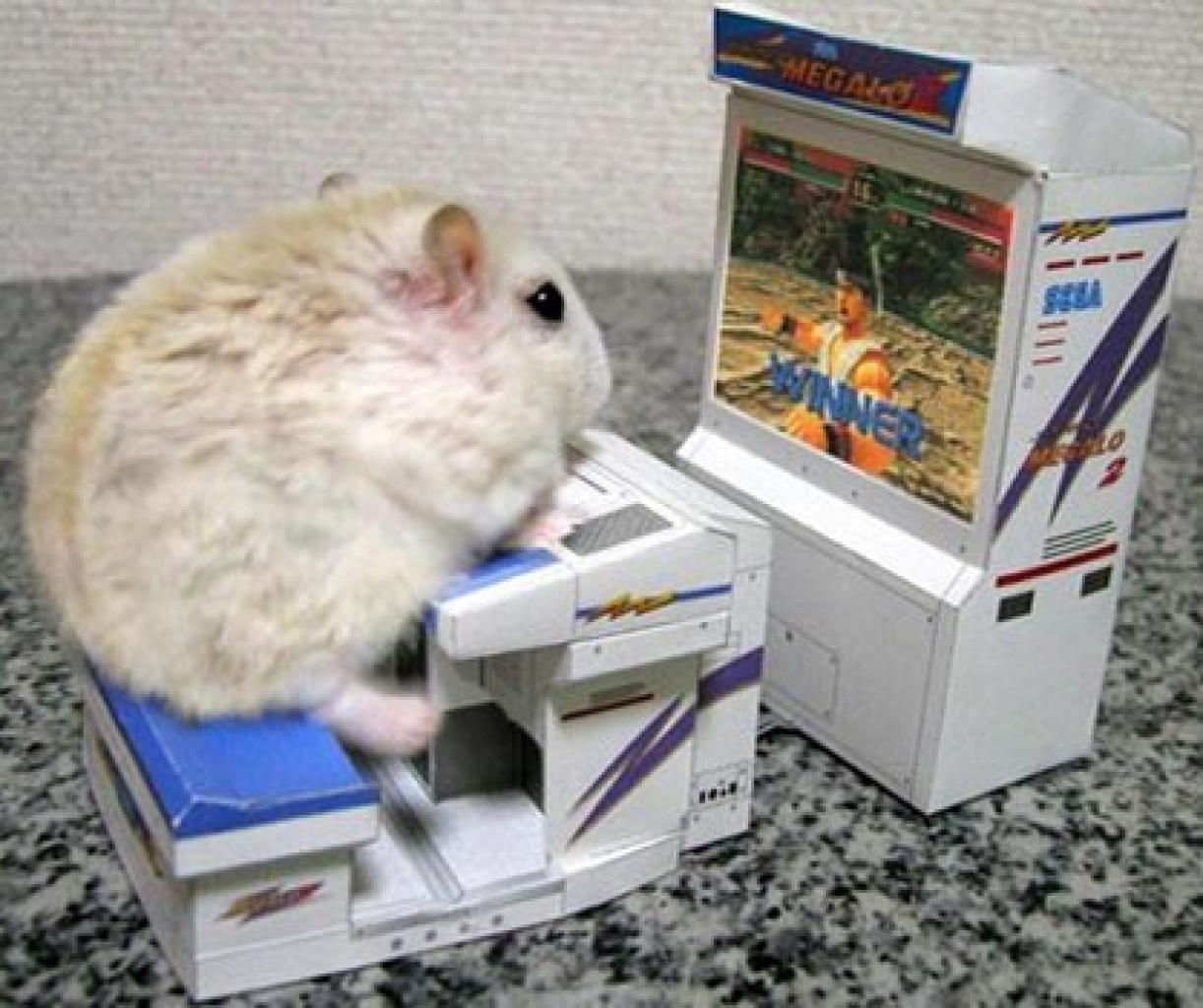 Der Virtua Fighter-Hamster