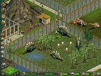 Zoo Tycoon - die Complete Collection erscheint Anfang September.
