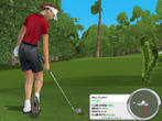 Tiger Woods 2003 - ernste Konkurrenz für Links?