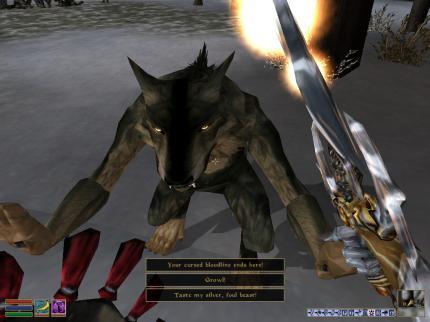 Morrowind: Bloodmoon