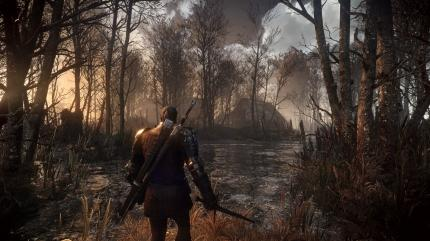 The Witcher 3: Wild Hunt (7)