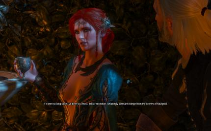 The Witcher 3 Mods - 03 07 2015