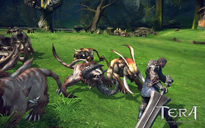 Neue Screenshots zu Tera: The Exiled Realms of Arborea.