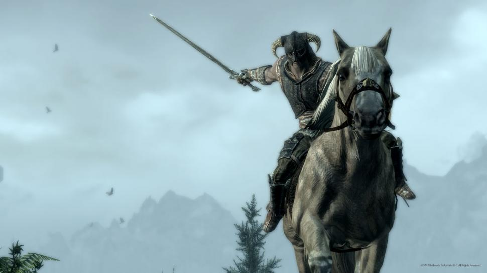 The Elder Scrolls 5: Skyrim  (1)