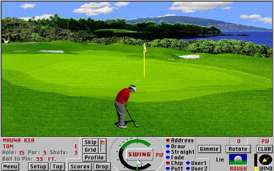 Die Golf-Simulation Links (1991) besticht durch wunderschöne Grafik und einen hohen Realismusgrad. Ebenfalls legendär: Die große Anzahl der relativ teuren Zusatzdisketten, die weitere Golf-Kurse enthalten.