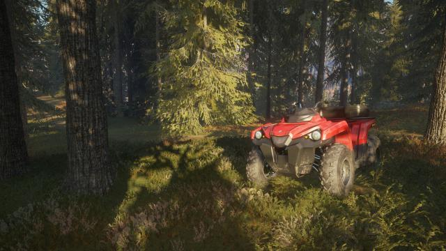 Call Of The Wild Tipps
