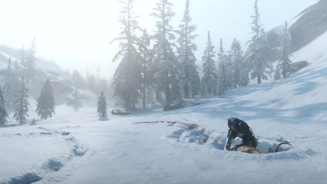 Red Dead Redemption 2: Riskanter Schatz finden - Video-Tipp