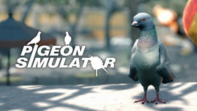 Tauben Simulator