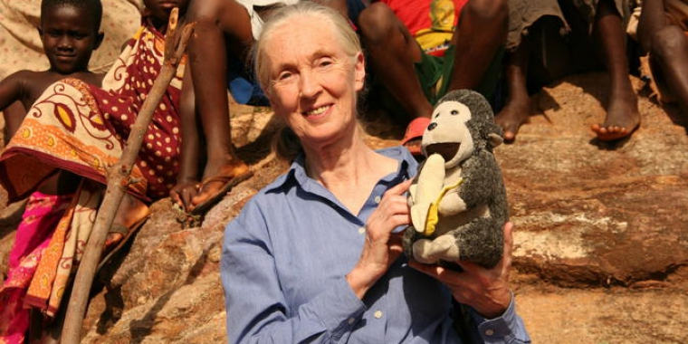 Jane's Journey - Die Lebensreise der Jane Goodall (6)