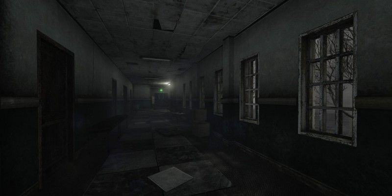 Island Asylum Sims