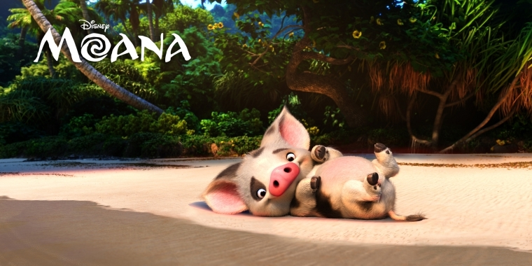 Vaiana Die Charaktere Des Tropischen Disney Films Auf Acht Neuen