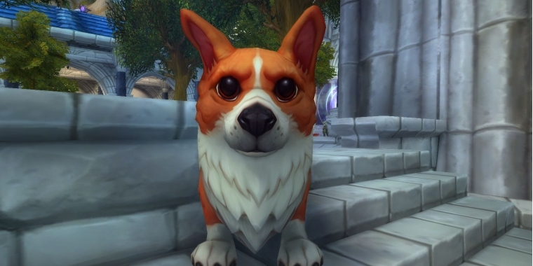 World of Warcraft: Corgi