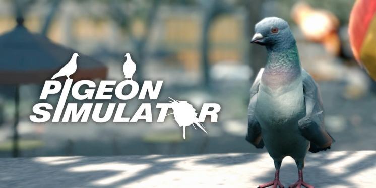 Tauben Spiele